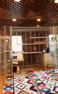 Large Cat Enclosures